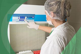 Processamento X esterilização